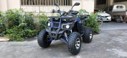 НОВИЙ Квадроцикл TIGER 200